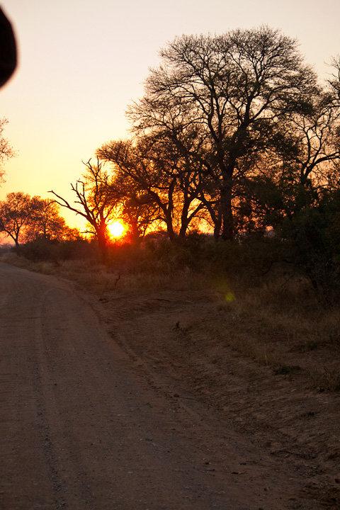 Nascer do Sol no Kruger